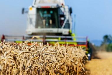 Landwirtschaft Niederrhein