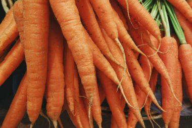 Bio Lebensmittel Karotten